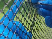 Uwalnianie ważki, która zaklinowała się w siatce od trampoliny ogrodowej