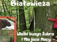 Białowieża - 3 ciekawe miejsca na trasie Green Velo
