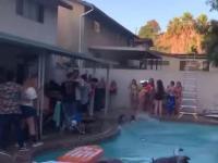 Kolejna, co próbuje skoczyć z dachu do basenu