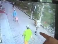 Kot wypadł z balkonu wprost na głowę mężczyzny pozbawiając go przytomności