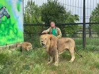 Rosjanin kontra cztery lwy