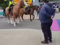 Konie w Londynie nie akceptują ideologii LGBT