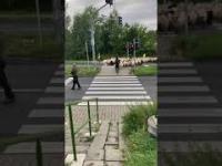 Barany na zebrze