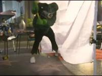 Gwiazda Trumpa w Hollywood Roztrzaskana Przez Hulka
