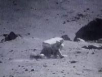 Zachowanie astronautów na Księżycu