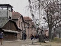 Auschwitz - tu polskiej historii nie poznasz