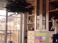 Bezpieczne świąteczne drzewko