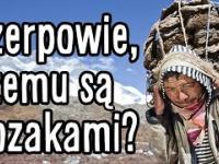 Dlaczego Szerpowie są takimi kozakami na dużych wysokościach?