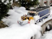 Kolej, śnieg oraz kot