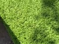 Kiedy sąsiad ma bardziej zielony trawnik
