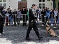 Coś poszło nie tak... Niegrzeczny pies, pokaz tresury psów policyjnych.
