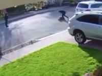 Napad uliczny na prosiaka