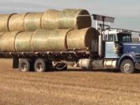 Niesamowicie Ciekawe Maszyny Rolnicze