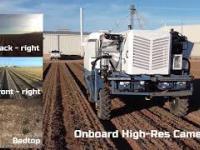 Rolnictwo bez nawozów- autonomiczny robot zwalcza chwasty