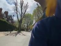 Facet zabiera swoje papugi na spacer po mieście