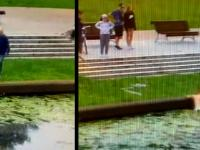 Wskoczyła do rzeki na ratunek kotom. Nowy Dwór Gdański
