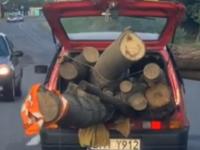 Transport drewna Cinquecento