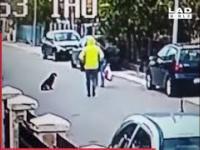 Bezpański pies broni kobiety przed rabusiem