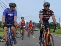 Rowerzysta spotyka łanię