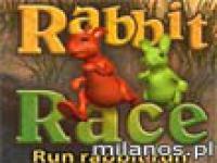 Rabbit Race